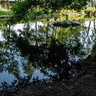 Flusslandschaft mit Spiegelung
