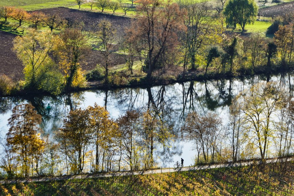 Flusslauf / Neckar