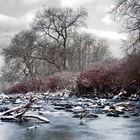Flusspoesie