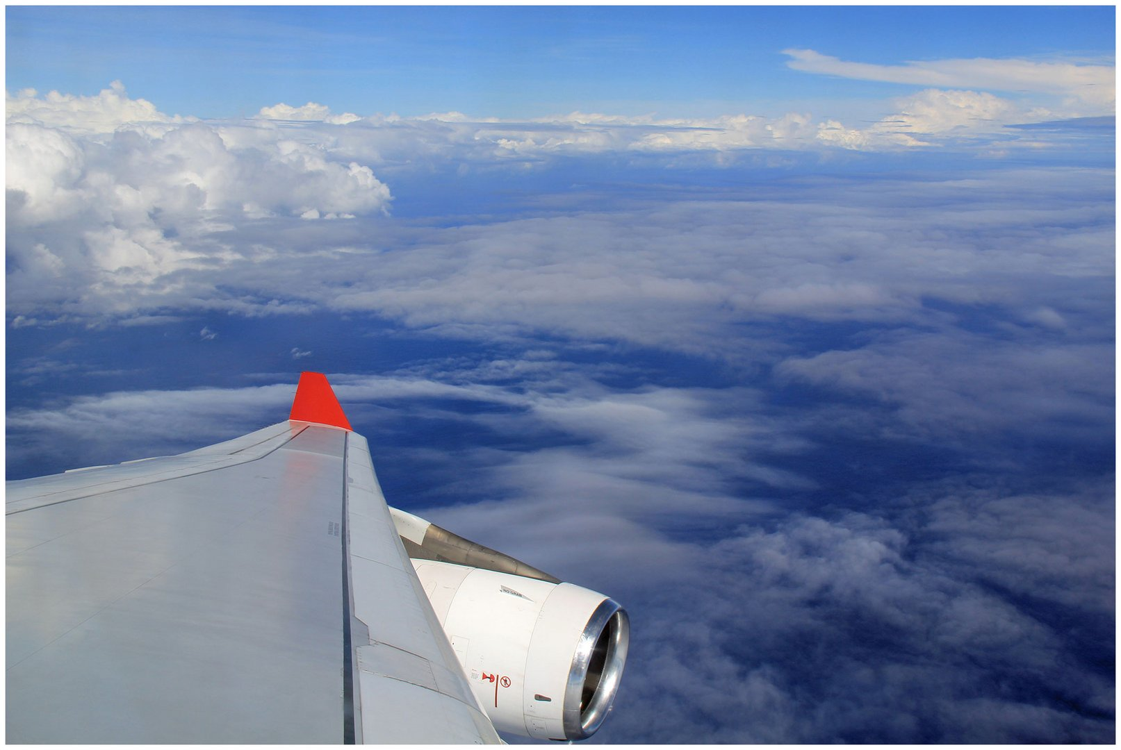 Fly away......