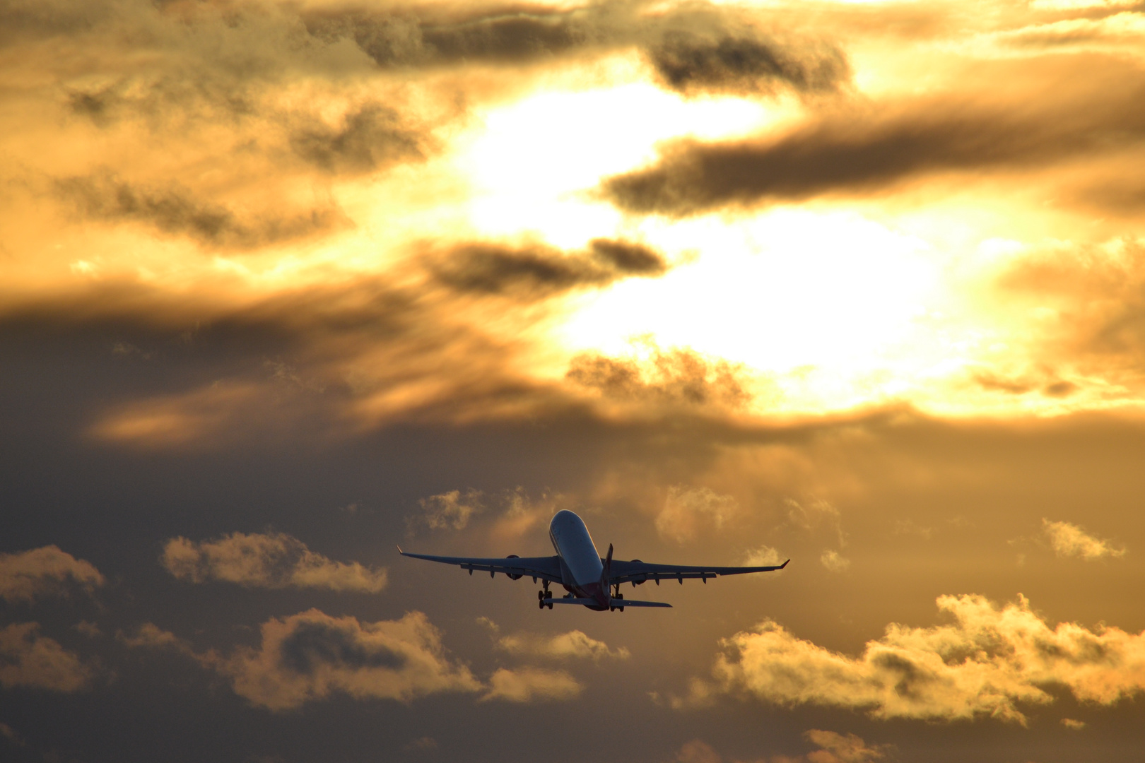 ...............Fly away