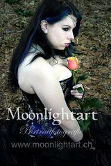 flyer moonlightart