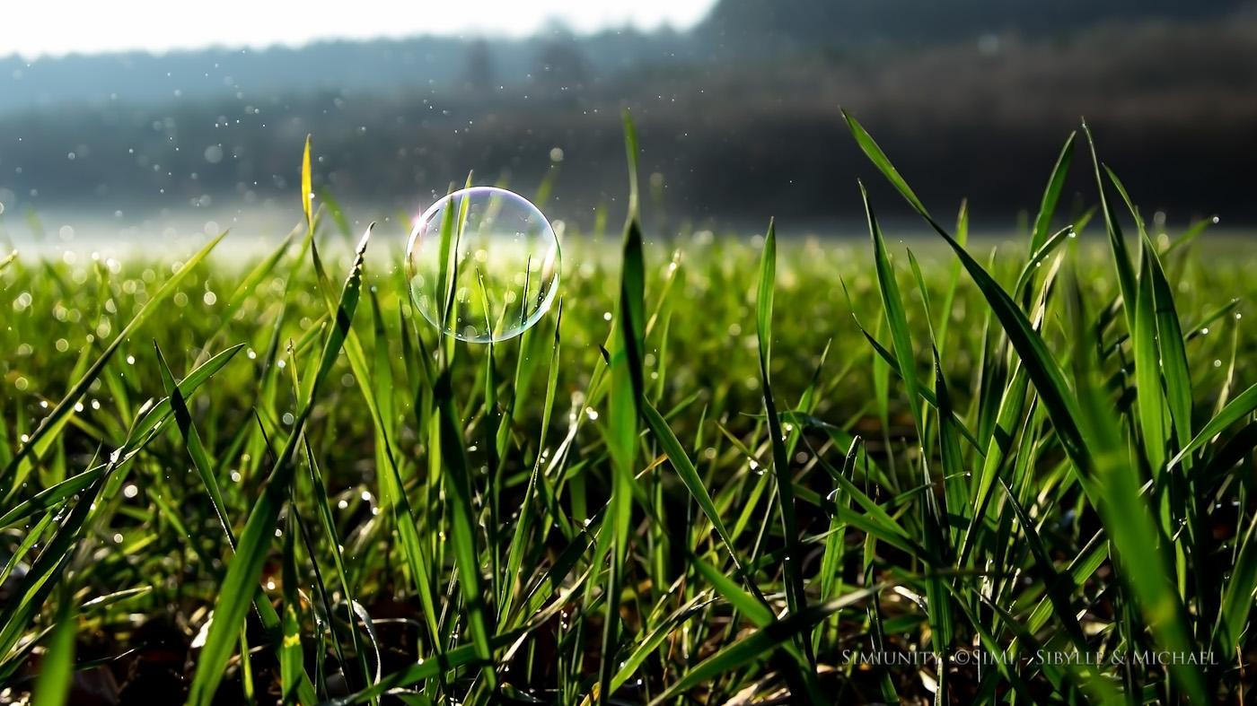 Flying Bubble [2014]