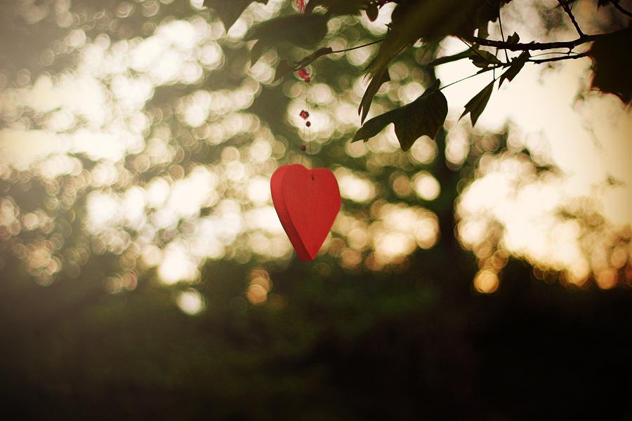 flying heart.