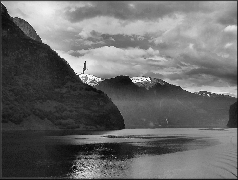 Flying in the Norwegian skies