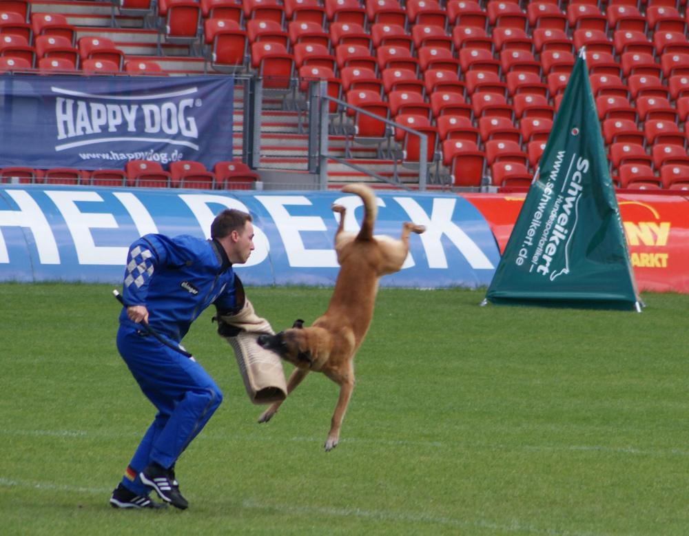 FMBB Weltmeisterschaft 2010 in Cottbus