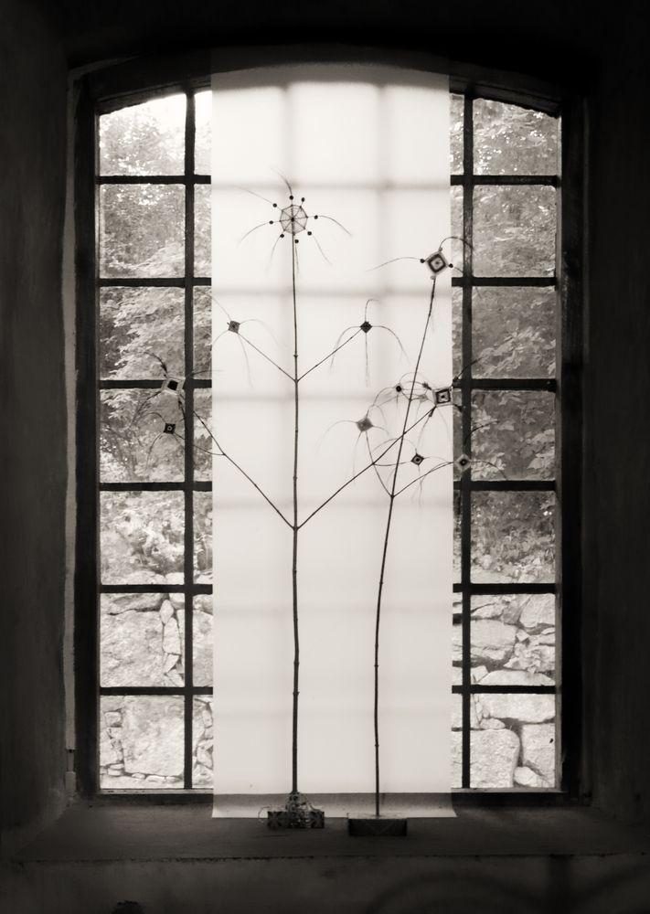 Fönster 25