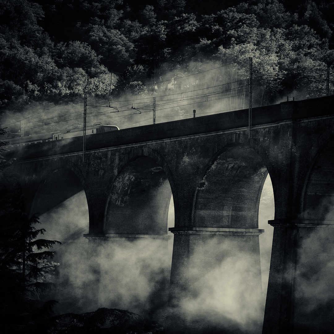 Fog and trains