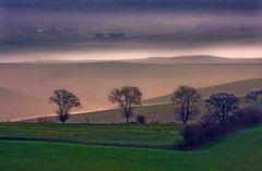 fog in hill