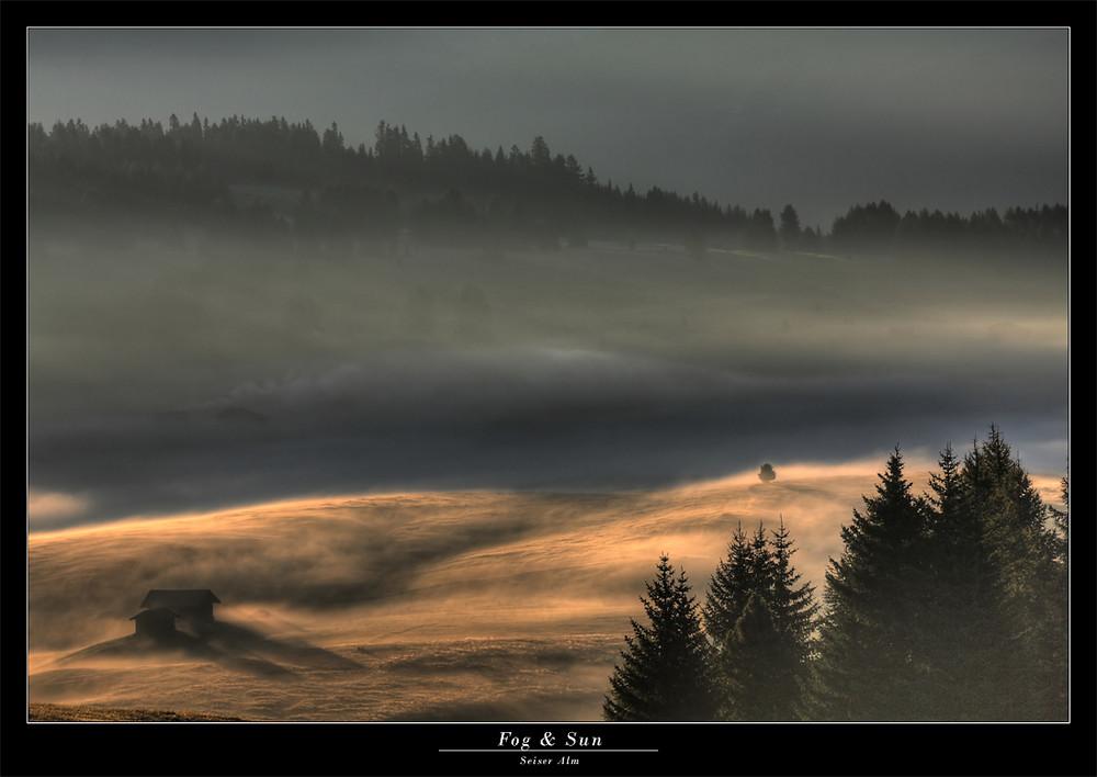 Fog & Sun (3)