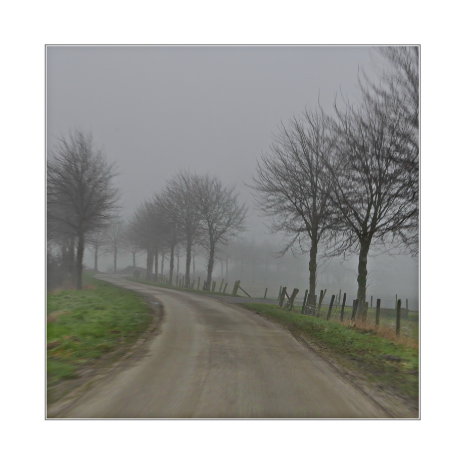 foggy atmosphere (12:30)