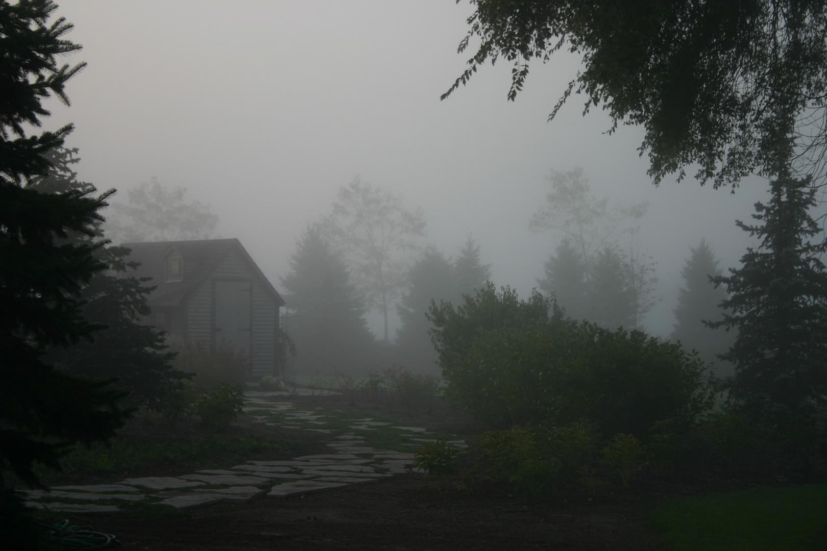 foggy cottage