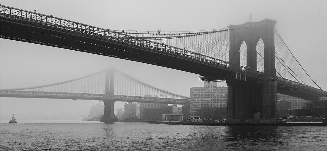 Foggy - Morning