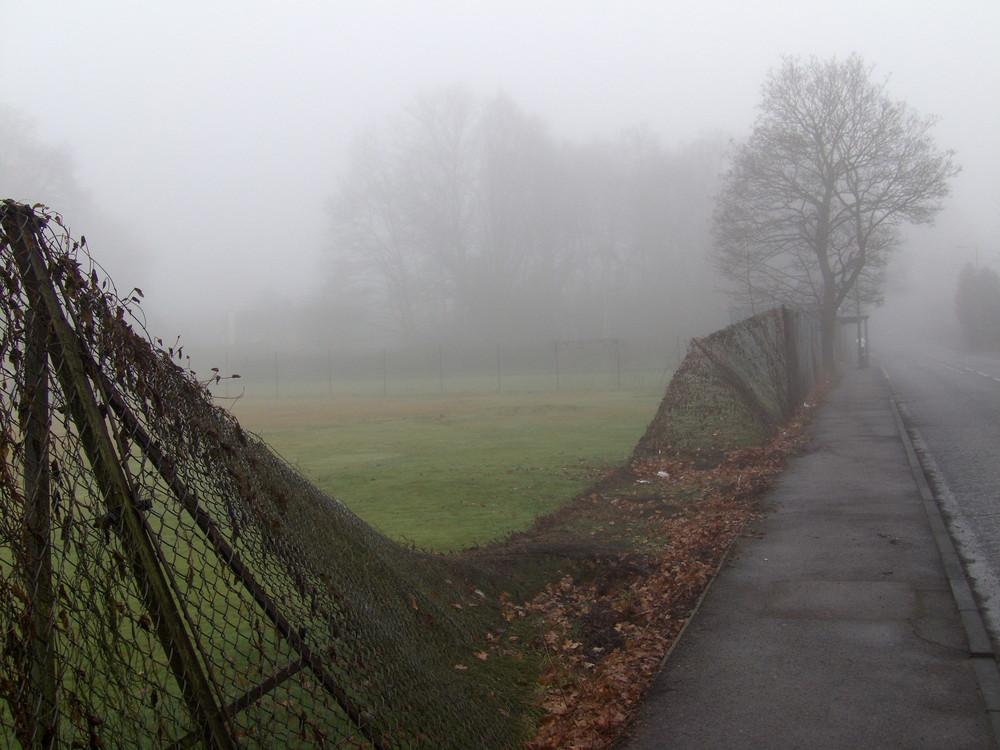 Foggy morning in Mayford
