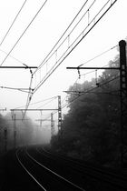 foggy station
