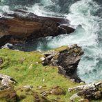 Fogher Cliffs auf Valencia Island nörlich der Halbinsel Iveragh (Ring of Kerry)