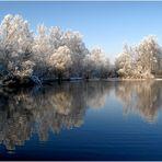 Fohlenweiher im Winter