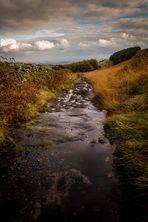 Follow the stream ....