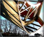 FONDATION - LOUIS VUITTON - 24 -
