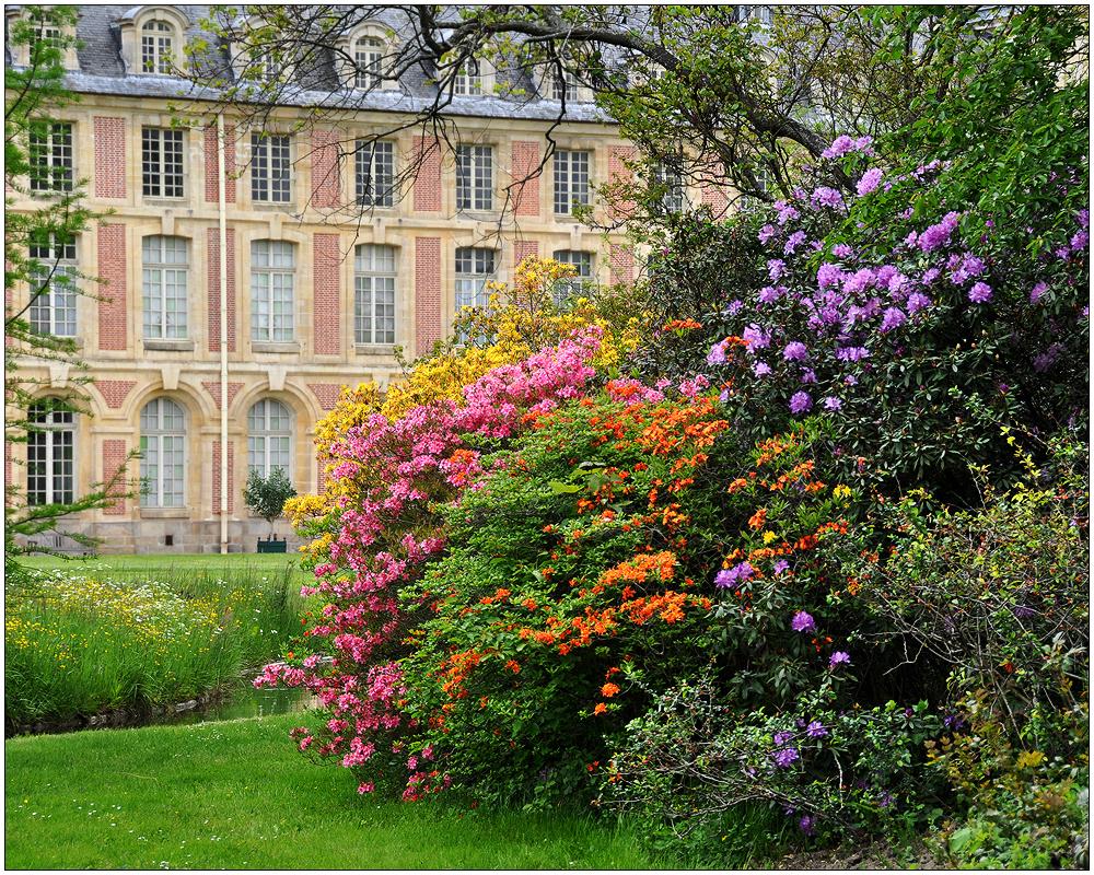 Fontainebleau – der Park IV