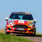 Ford Fiesta Rally 4 Part 2