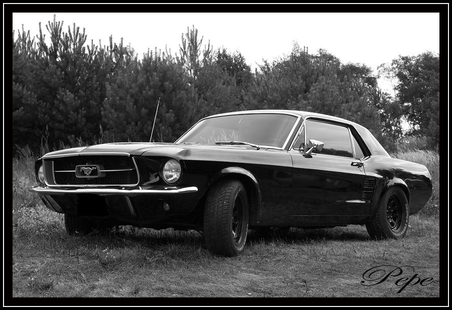 Ford Mustang - Eine Legende