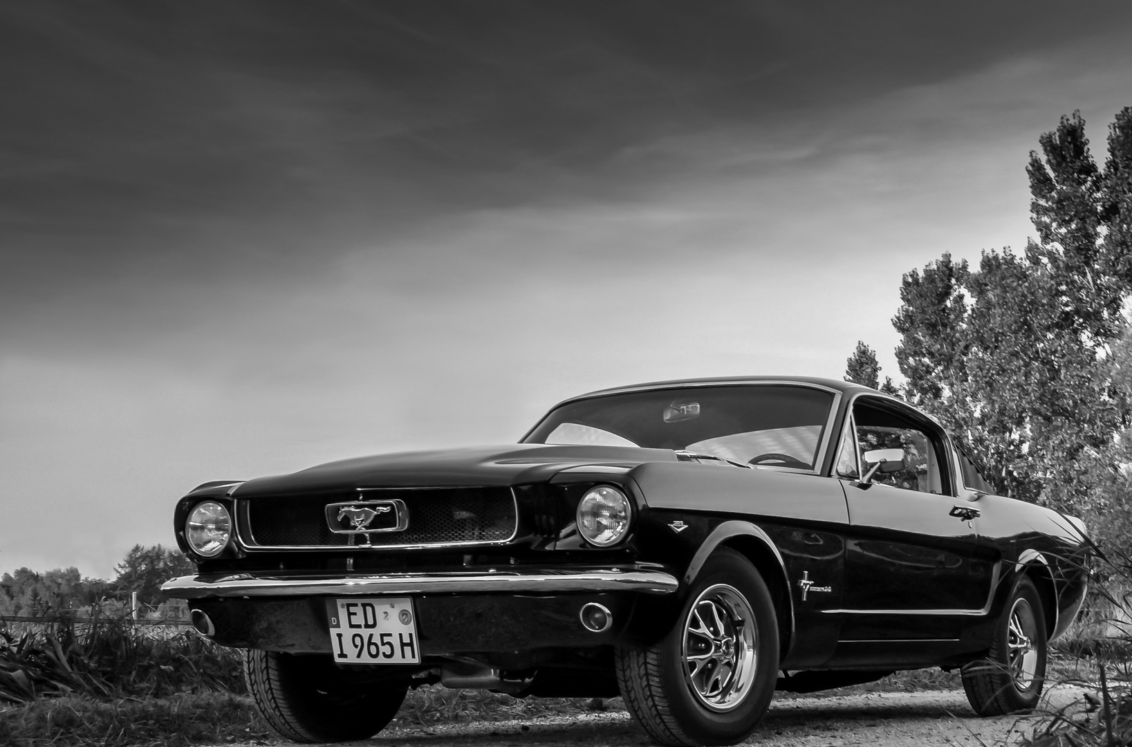 Ford Mustang Fastback 2+2 1965