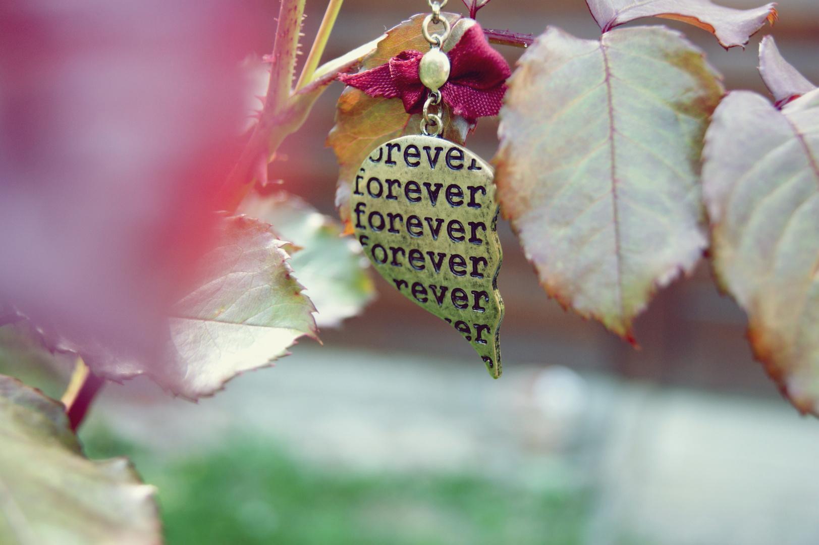 forever..
