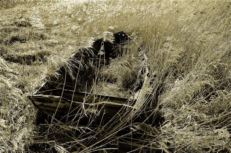 Forgotten Old Boat Wreck