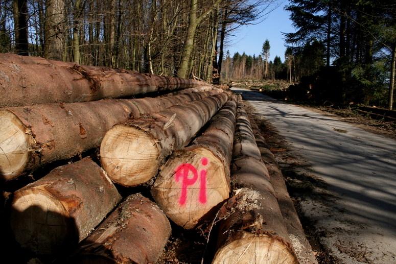 Formel für Waldarbeiter (d x Pi)
