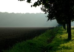 Forstwald...
