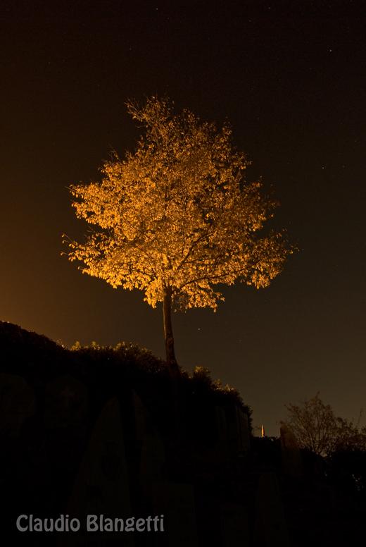Foto notturna