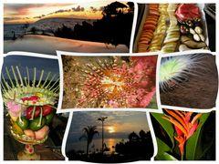 Fotocolage Bali - Motive ideal für Grußkarte geeignet