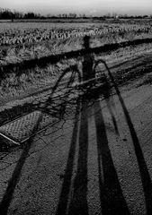 fotografando -pedalando