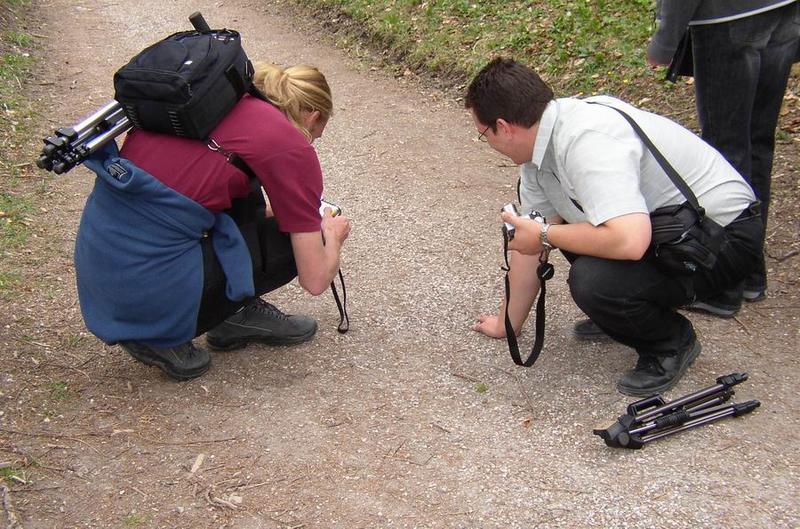 Fotografen bei der Arbeit V (Auf Käferjagd)