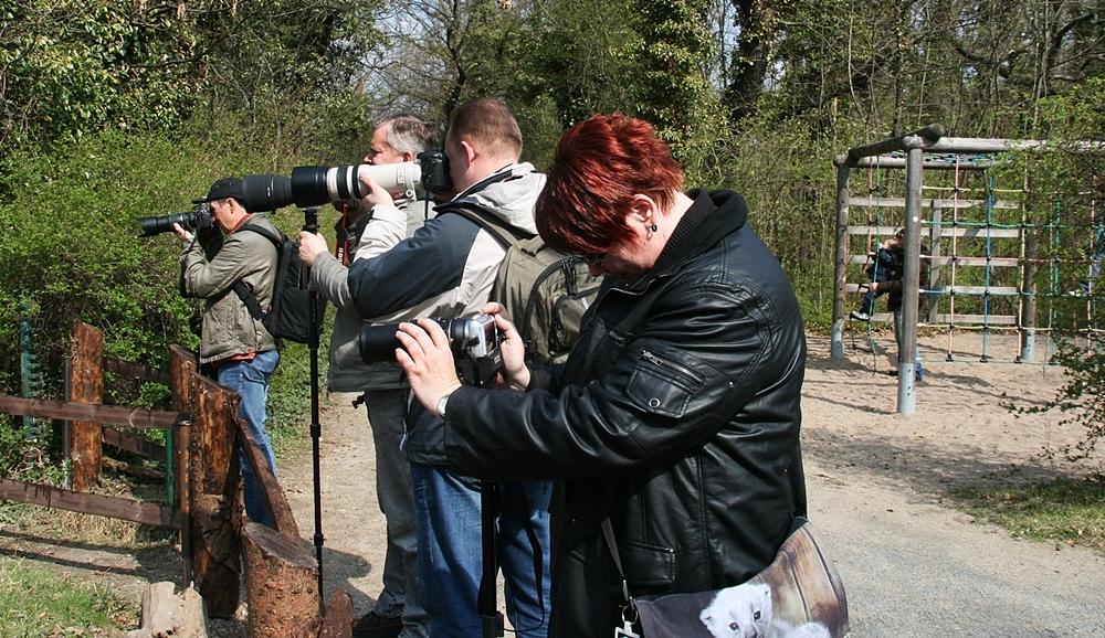 Fotografen im Einsatz