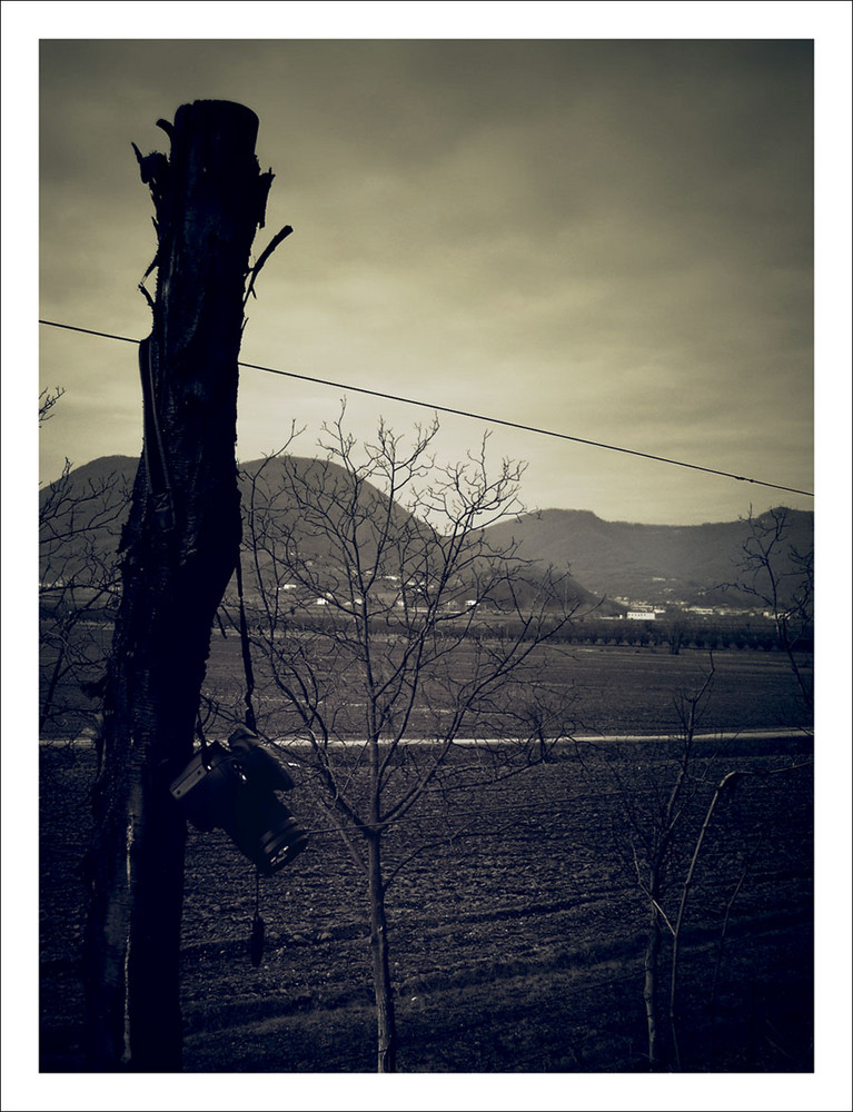 fotografi.