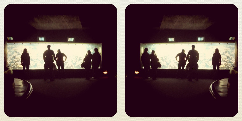 Fotografischer Monolog 38