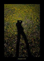 Fotografo in erba