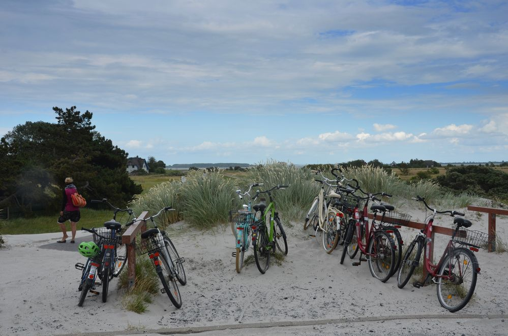 Fotos am Strand Vitte / Insel Hiddensee