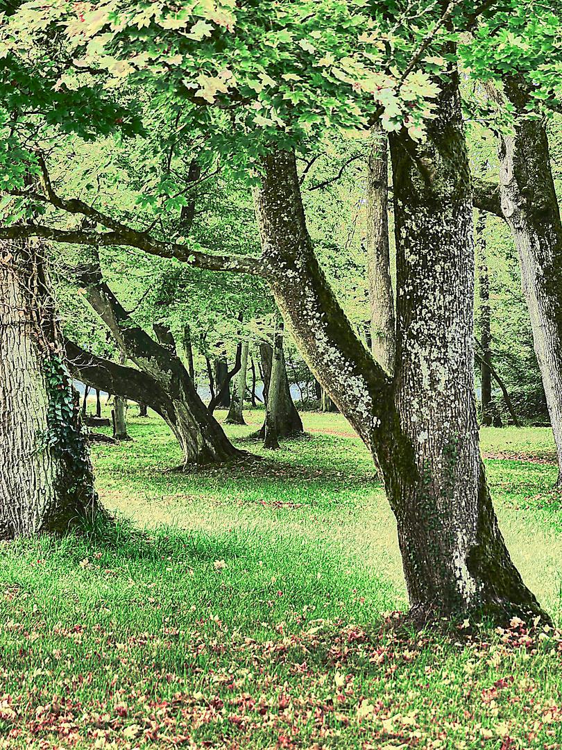 Fotoshooting im Park Schönbusch von Aschaffenburg