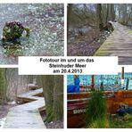 Fototour am 20.4.2013 im Steinhuder Meer