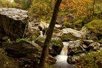 Fototour Hohes Venn – Eifel – Ardennen - Wilde Landschaft