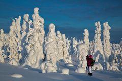 Fototours im finnischen Winter