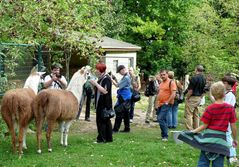 Fototreff, heute im Zoo Aschersleben