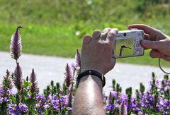 Fotoworkshop mit der einfachen Kompaktkkamera
