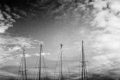 four masts