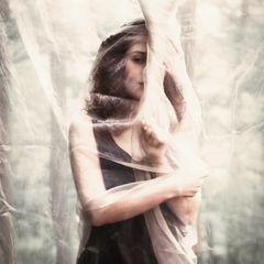 Fragments of Stolen Dreams