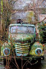 Framo / Vehicle ..... mit Katze
