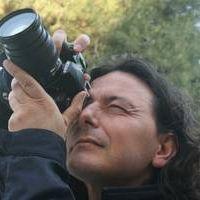 Francesco Torre